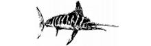 logo_fish